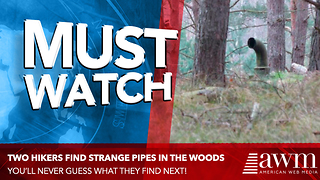 Two Guys Spot Pipes In Middle Of The Woods, Know Exactly What It Means - Video