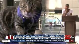 Hero cat to be honored on Rose Parade float