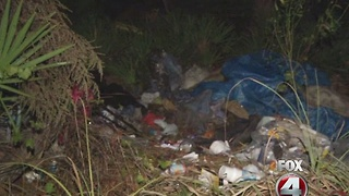 Meth lab found in North Fort Myers homeless camp - Video