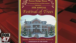 Festival of Trees at Turner-Dodge House in Lansing - Video