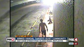 Armed Vandal Targets Quiet Community - Video