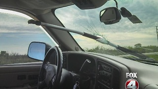 Oar through woman's car window - Video