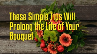 These Simple Tips Will Prolong the Life of Your Bouquet - Video
