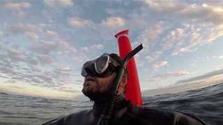 GoPro Footage Shows Scuba Diver Stranded 30 Miles From Coast - Video