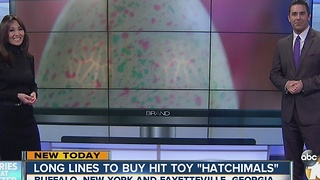 Long lines to buy hit toy