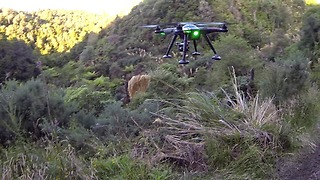 Drone gets shot down by high powered rifle - Video