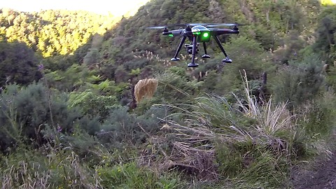 Drone gets shot down by high powered rifle