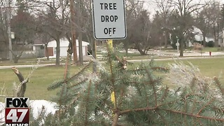 East Lansing collecting tree donations - Video