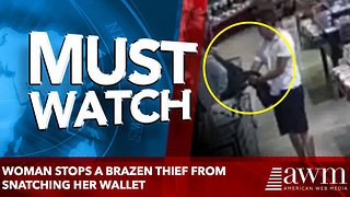 woman stops a brazen thief from snatching her wallet - Video