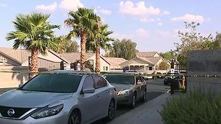 Person shoots at officers west of Clark County Wetlands Park - Video