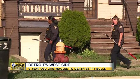 9-year-old girl mauled to death by pit bulls in Detroit