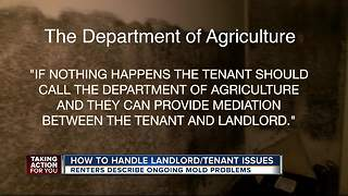 How to handle landlord-tenant issues - Video