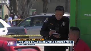 Two dead after Mountain View shooting - Video