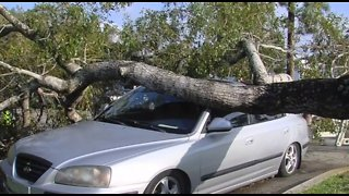 Cleaning up storm damages in Palm Beach County