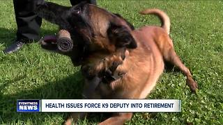 K-9 Hayco retires - Video