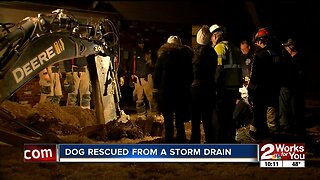 Tulsa firefighters rescue dog from a storm drain