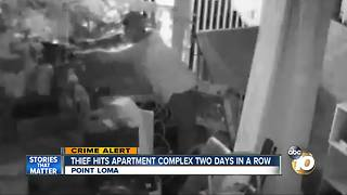 Thief hits apartment complex two days in a row - Video
