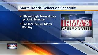 After Irma: What to do with debris - Video