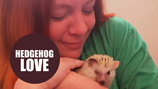 Woman goes on first dates for cash to support her hedgehog rescue center - Video