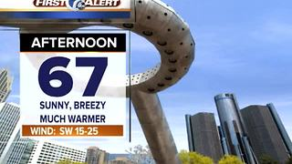 Breezy, warm pattern - Video