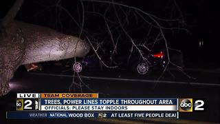 Trees, Power lines topple throughout area - Video