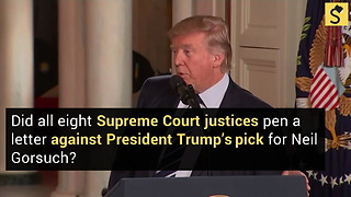 All 8 Supreme Court Justices Stand in Solidarity Against Trump SCOTUS Pick?