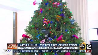 The Baltimore DPW's annual Mitten Tree Campaign kicks off - Video