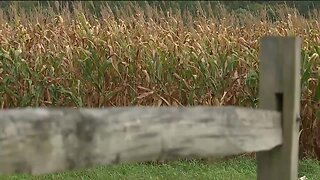 Work continues for Northeast Ohio farmers during pandemic, along with uncertainty