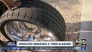 Several Waddell car windows smashed, tires slashed - Video