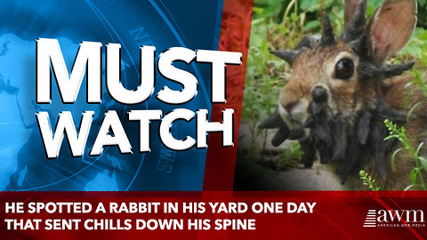 He Spotted A Rabbit In His Yard One Day That Sent Chills Down His Spine
