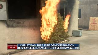 Christmas tree fire demonstration