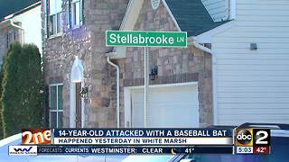 14-year-old attacked with baseball bat on the way home from school - Video