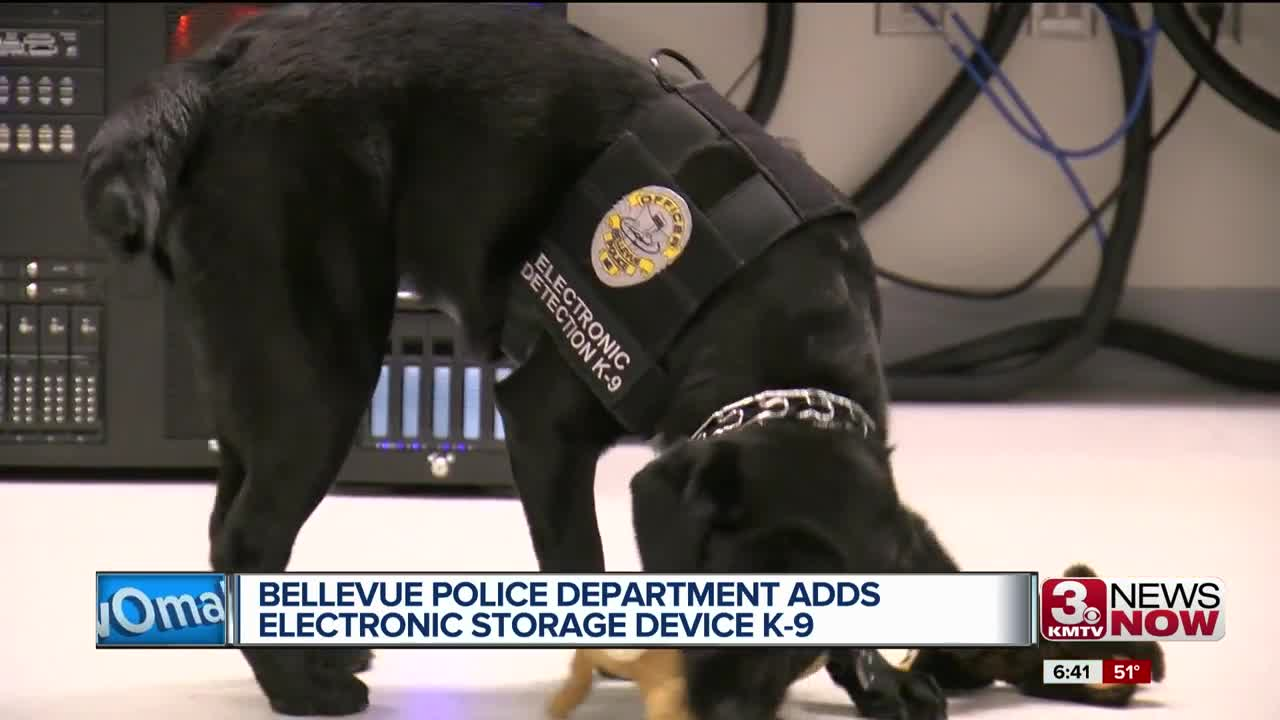 Bellevue Police Department adds electronic storage device K-9