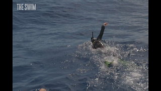 What Happens to Your Body After Swimming 1,000 Nautical Miles? - Video