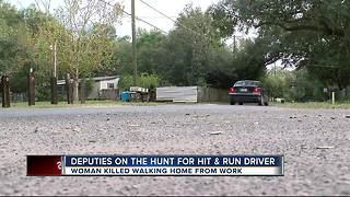 Search for hit and run driver - Video