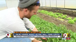 Online farmers market helping small farms survive