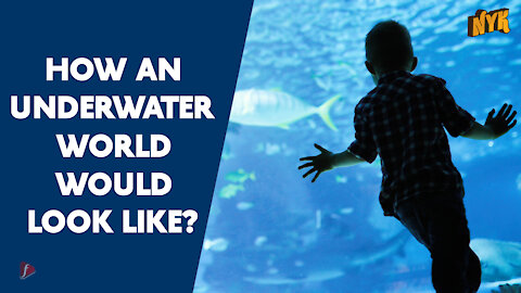 What If We Could Breathe Under Water