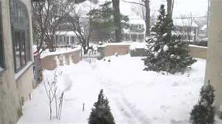 Snowstorm Quickly Covers Upstate New York Garden - Video