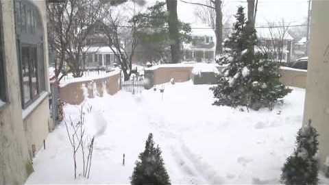 Snowstorm Quickly Covers Upstate New York Garden