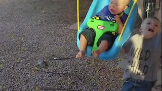 Boy VS Swing: Watch Where You're Going!