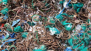 Remote Uninhabited Island Found Covered With Thousands Of Rubber Bands