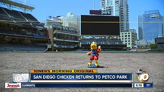 San Diego Chicken returns to Petco Park Saturday night