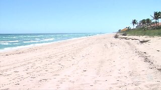 South Florida beach closures could help marine life, water quality