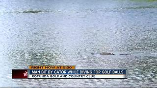 Man attacked by gator at Fla. golf course - Video