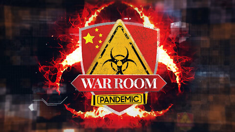 Bannons WarRoom: Ep 487- Pandemic: Ghost in the Machine w/ Joe Hoft and John Fredericks