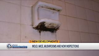 Tenants cautiously optimistic as city begins inspections at Park Place - Video