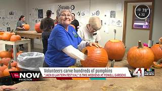 Volunteers carve hundreds of pumpkins - Video