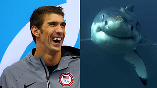 Michael Phelps Trolls EVERYONE for Shark Week - Video
