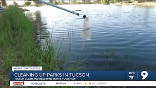 Team Up to Clean Up keeps parks beautiful