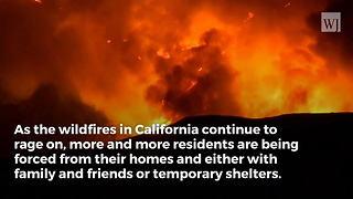 Rob Lowe Confirms California Fires Have Brought Celebrity's Worst Nightmare to Life - Video